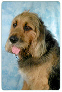 Otterhound Cutting Board