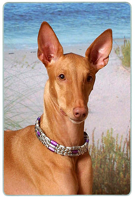 Pharaoh Hound Cutting Board