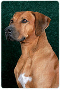 Rhodesian Ridgeback Cutting Board
