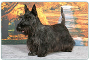 Scottish Terrier Cutting Board
