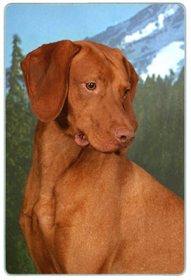 Vizsla Cutting Board