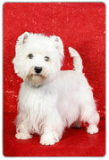 West Highland White Terrier Cutting Board