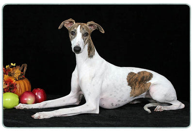 Whippet Cutting Board