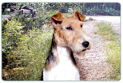 Wire Fox Terrier Cutting Board
