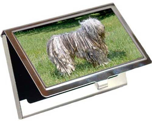Bergamasco Card Case