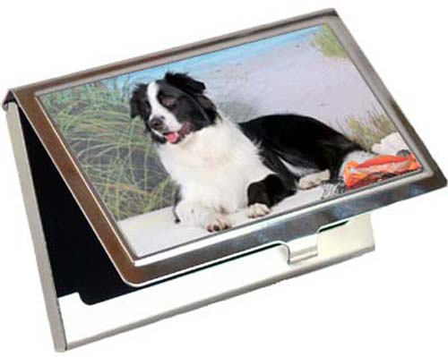 Border Collie Card Case