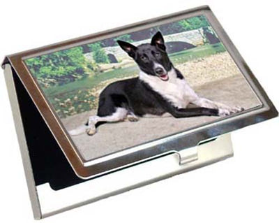 Canaan Dog Card Case