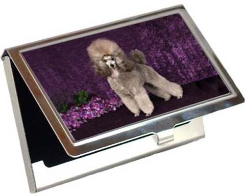 Poodle Card Case