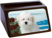Coton du Tulear Business Card Holder