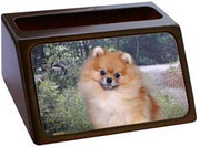Pomeranian Business Card Holder