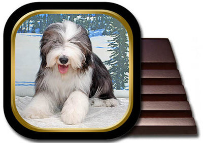 Canine Designs Set of 2 Bearded Collie Luggage Tags