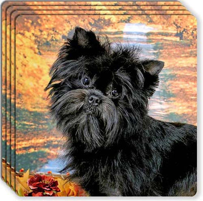 Affenpinscher Rubber Coaster Set