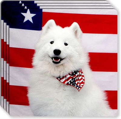 American Eskimo Rubber Coaster Set