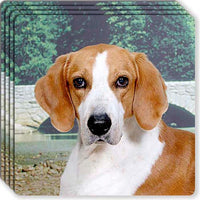American Foxhound Rubber Coaster Set