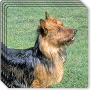 Australian Terrier Rubber Coaster Set