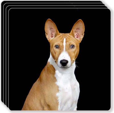 Basenji Rubber Coaster Set