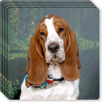 Basset Hound Rubber Coaster Set