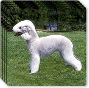 Bedlington Terrier Rubber Coaster Set