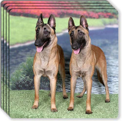 Belgian Malinois Rubber Coaster Set