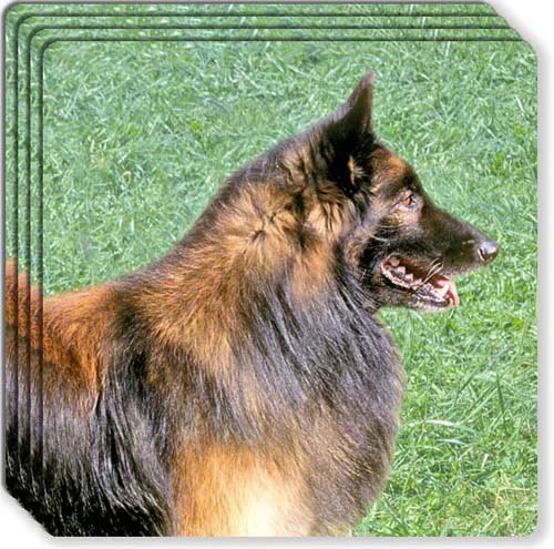 Belgian Tervuren Rubber Coaster Set