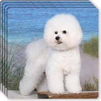 Bichon Frise Rubber Coaster Set