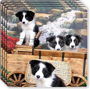 Border Collie Rubber Coaster Set