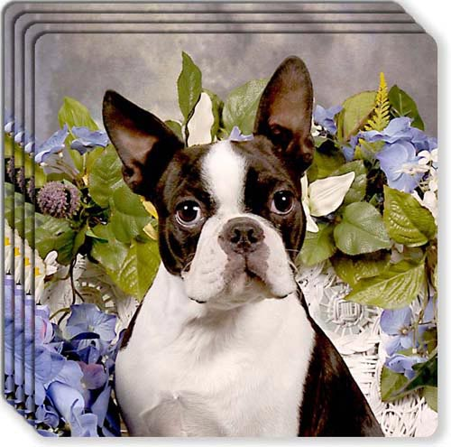 Boston Terrier Rubber Coaster Set