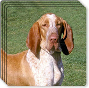 Bracco Italiano Rubber Coaster Set