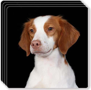 Brittany Spaniel Rubber Coaster Set