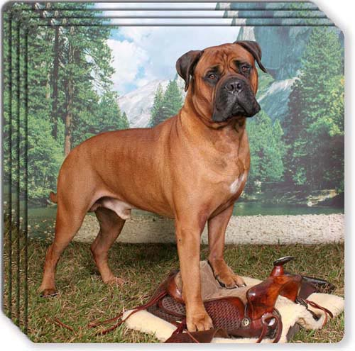 BullMastiff Rubber Coaster Set