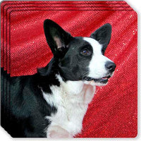 Cardigan Welsh Corgi Rubber Coaster Set