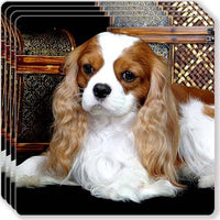 Cavalier King Charles Spaniel Rubber Coaster Set