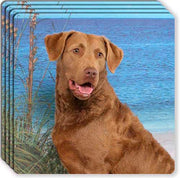 Chesapeake Bay Retriever Rubber Coaster Set
