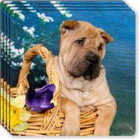 Chinese Shar-Pei Rubber Coaster Set