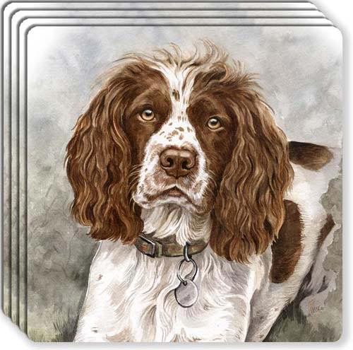 English Springer Spaniel Rubber Coaster Set