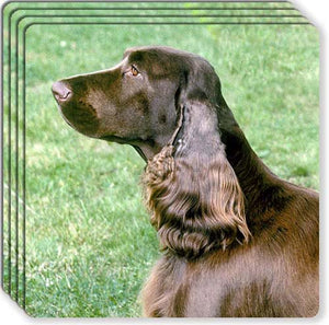 Field Spaniel Rubber Coaster Set