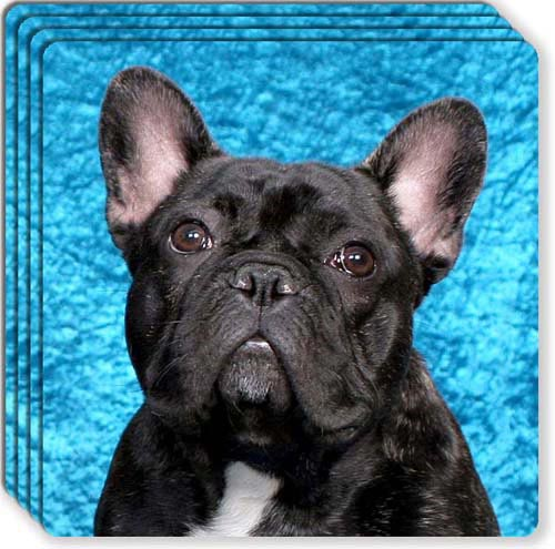 French Bulldog Rubber Coaster Set
