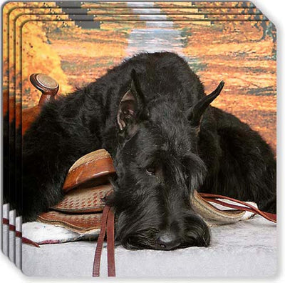 Giant Schnauzer Rubber Coaster Set
