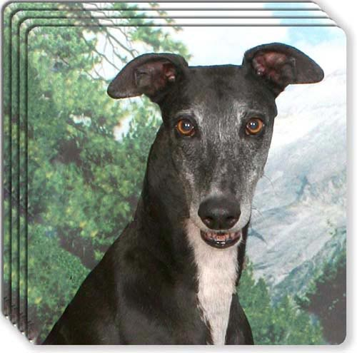 Greyhound Rubber Coaster Set