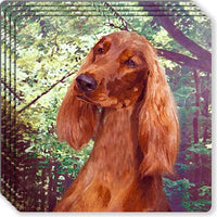 Irish Setter Rubber Coaster Set