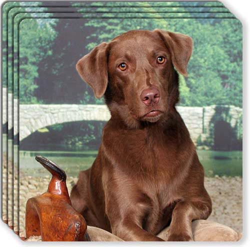 Labrador Retriever Rubber Coaster Set