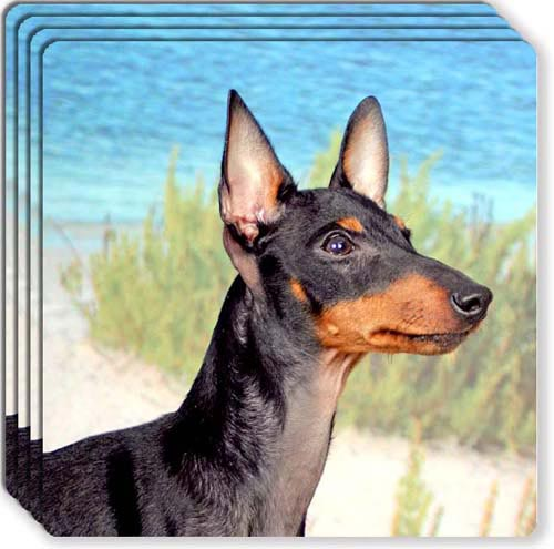 Manchester Terrier Rubber Coaster Set