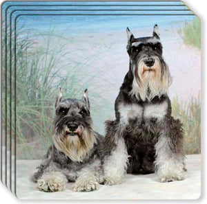 Miniature Schnauzer Rubber Coaster Set