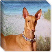 Pharaoh Hound Rubber Coaster Set