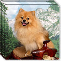 Pomeranian Rubber Coaster Set