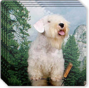 Sealyham Terrier Rubber Coaster Set