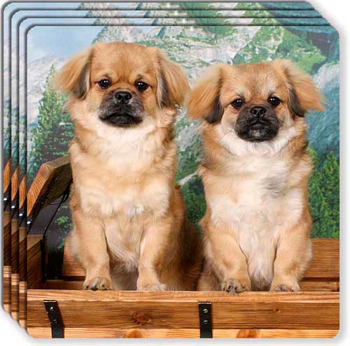 Tibetan Spaniel Rubber Coaster Set