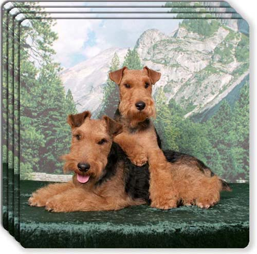 Welsh Terrier Rubber Coaster Set