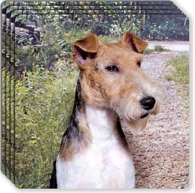 Wire Fox Terrier Rubber Coaster Set