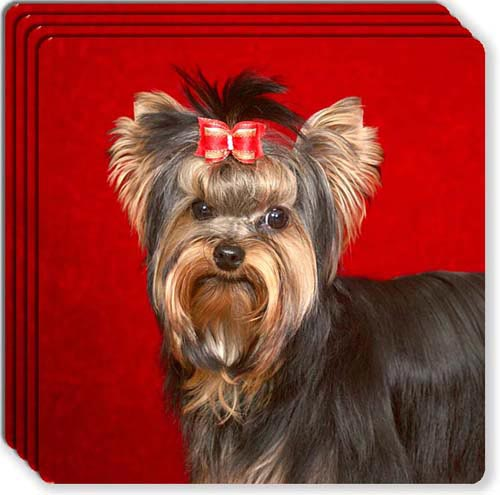 Yorkshire Terrier Rubber Coaster Set